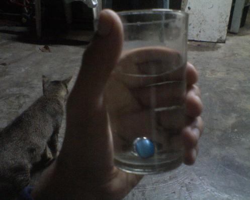 cat eye/mata kucing ini sungguh comel..